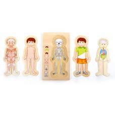 Puzzle Anatomie - baiat